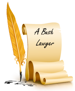 A Bush Lawyer